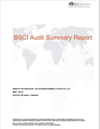BSCI-Audit-Summary-Report